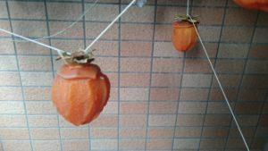 渋柿でホシガキ